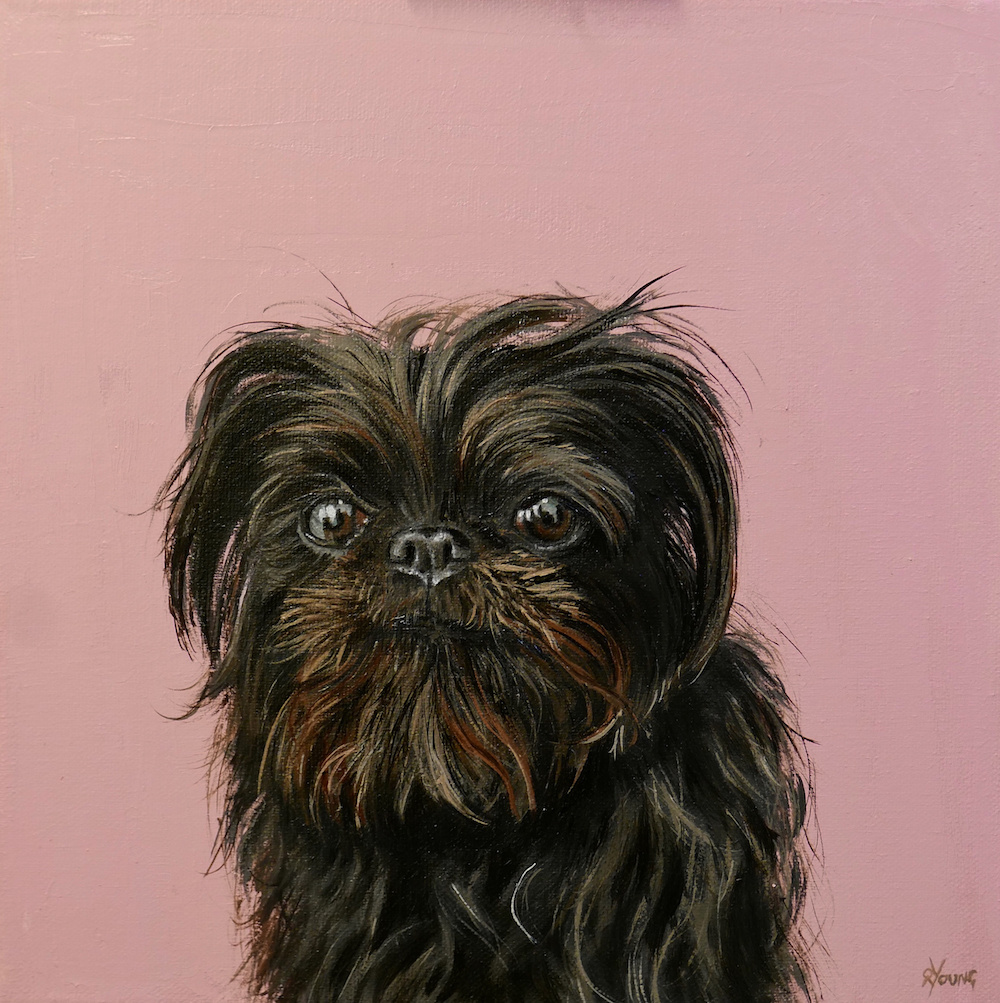 Piglet north west dog painting